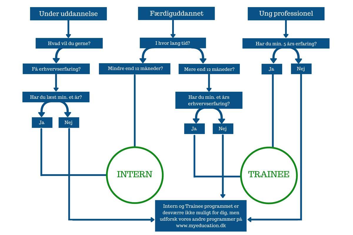 Elev i udlandet - Intern eller Trainee muligheder